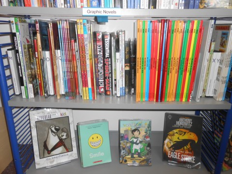 Library Graphic Novels