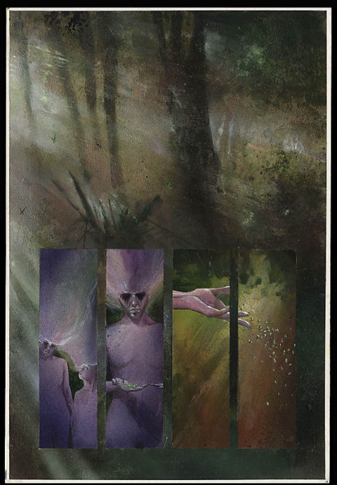 Black Orchid page by Dave McKean.  Source.