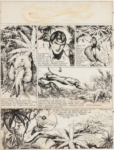 Tarzan Sunday 5-8-49 by Burne Hogarth.  Source.