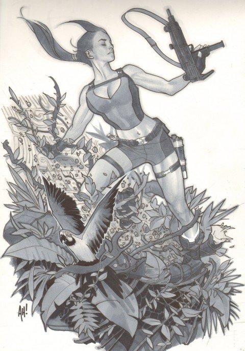 Tomb Raider by Adam Hughes.  Source.