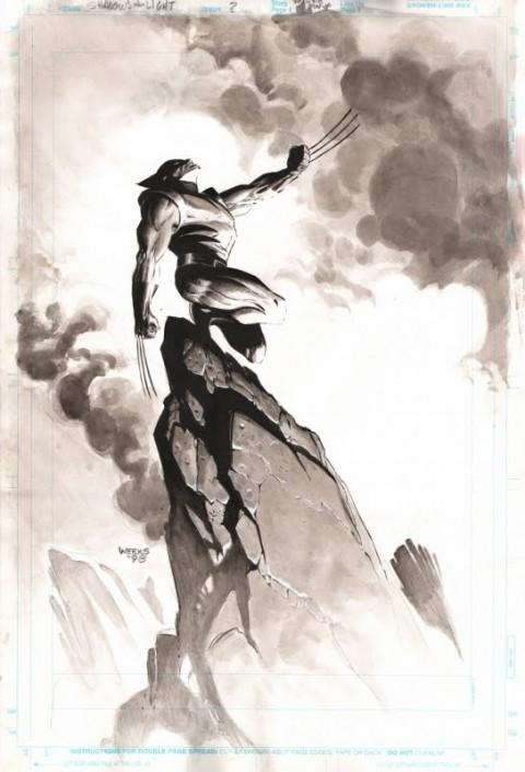 Wolverine by Lee Weeks.  Source.
