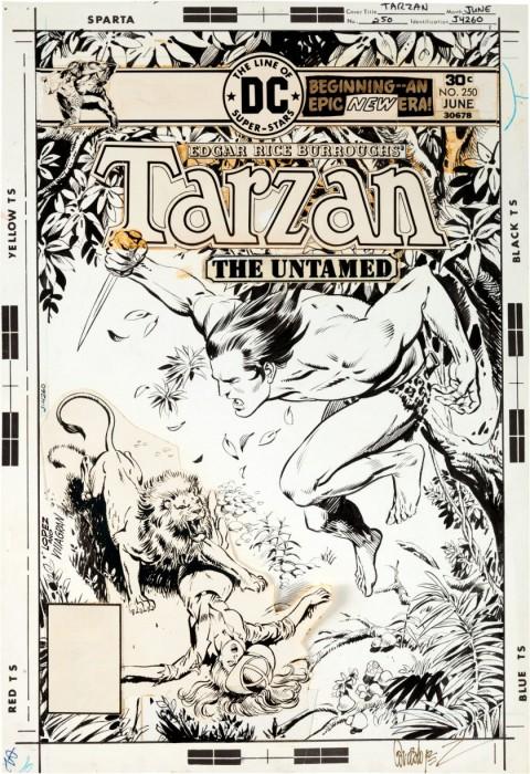 Tarzan issue 250 cover by Jose Luis Garcia-Lopez and Ricardo Villagran.  Source.
