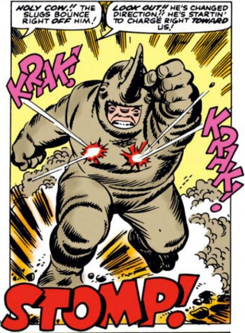 Rhino panel