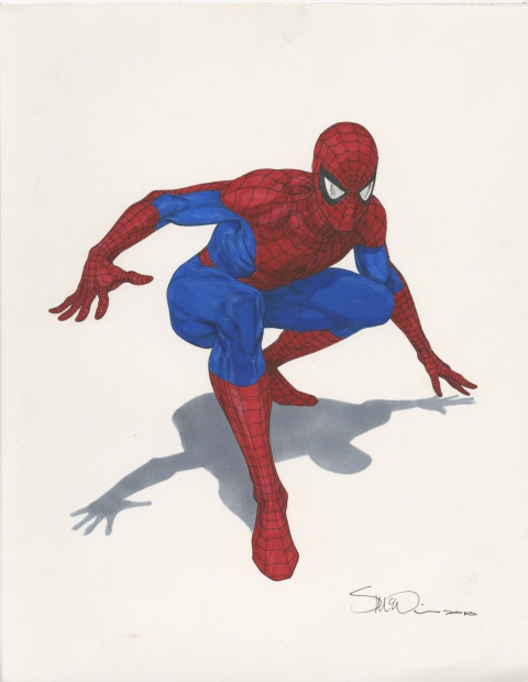 Spider-Man by Steve McNiven.  Source.