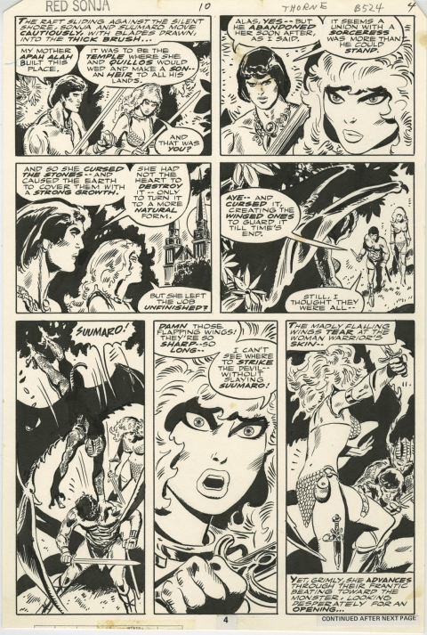 Red Sonja issue 10 page 4 by Frank Thorne.  Source.