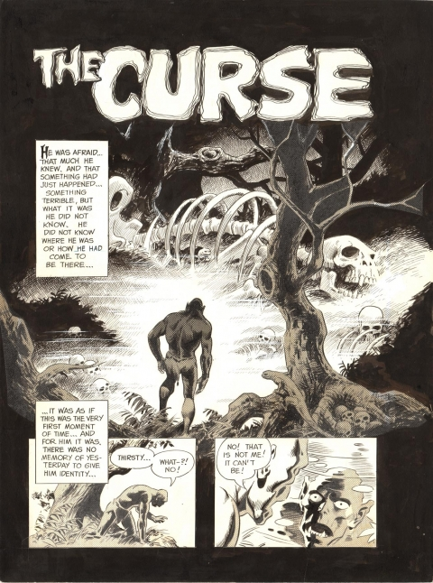 Vampirella issue 9 splash by Wally Wood. Source.