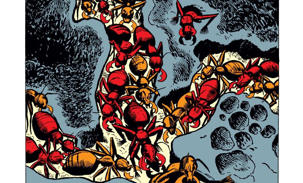 Week 9: The Early Marvel keys